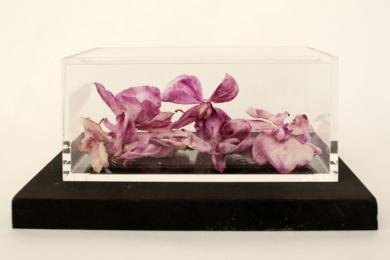 Orquídeas II (las cosas que no te dije)|EsculturadeMarcela Jardón| Compra arte en Flecha.es