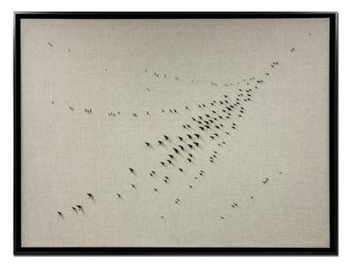 Pájaros #71|EsculturadeLuis Agulló| Compra arte en Flecha.es