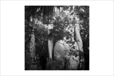 natura desnuda 1 FotografíadeRoberto Valentino  Compra arte en Flecha.es
