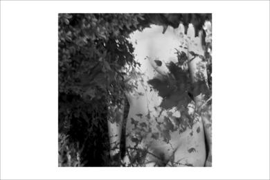 natura desnuda 2 FotografíadeRoberto Valentino  Compra arte en Flecha.es