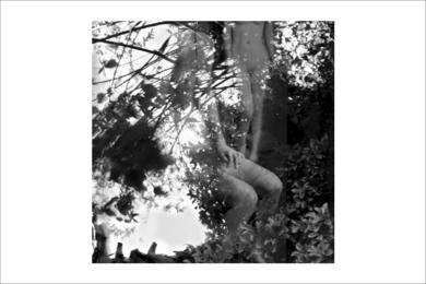 natura desnuda 3 FotografíadeRoberto Valentino  Compra arte en Flecha.es