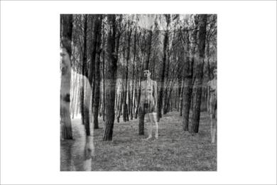 natura desnuda 4 FotografíadeRoberto Valentino  Compra arte en Flecha.es