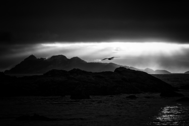 Persigue tus Sueños|FotografíadeIñigo Echenique| Compra arte en Flecha.es