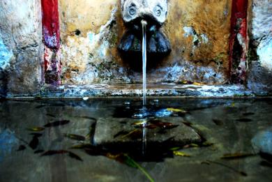 Tras el Cristal II|FotografíadeAna Sanz Llorens| Compra arte en Flecha.es