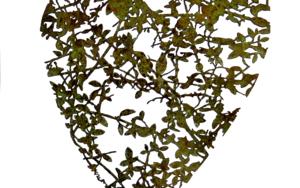 Desde el Corazón 11|EsculturadeKrum Stanoev| Compra arte en Flecha.es