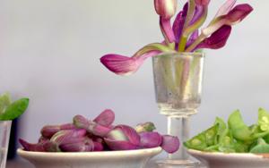 Orquídeas|FotografíadeLeticia Felgueroso| Compra arte en Flecha.es