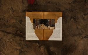El libro de la femineidad CollagedeTxabi Sagarzazu  Compra arte en Flecha.es