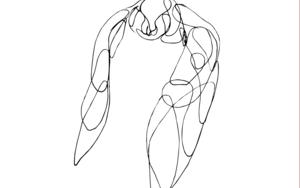 Pájaros III|DibujodeTaquen| Compra arte en Flecha.es