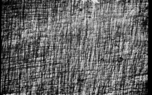 Bosque|DigitaldeJuan de la Sota| Compra arte en Flecha.es