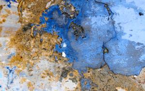 Texturas I|FotografíadePaulina Parra| Compra arte en Flecha.es