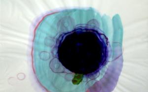 Del violeta|DibujodeMaría X. Fernández| Compra arte en Flecha.es