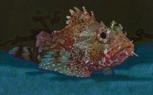 Red Scorpion Fish|DibujodeCarlos J. Márquez| Compra arte en Flecha.es