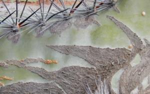Paisaje escondido|FotografíadeVerónica Bustamante Loring| Compra arte en Flecha.es