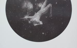 Asterope|FotografíadeElisa de la Torre| Compra arte en Flecha.es