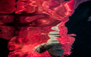 Angie 3|DigitaldeMar Agüera| Compra arte en Flecha.es