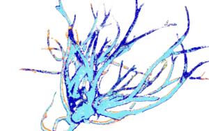 Azure 5|DigitaldeMarta Caldas| Compra arte en Flecha.es