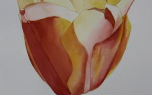 Tulipán Amarillo|PinturadeMiguel Ortega Mesa| Compra arte en Flecha.es