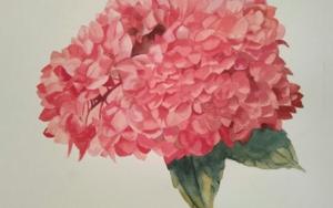 Hortensia|PinturadeMiguel Ortega Mesa| Compra arte en Flecha.es