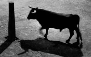 Sombras de mi memoria #22|FotografíadeCésar Ordóñez| Compra arte en Flecha.es