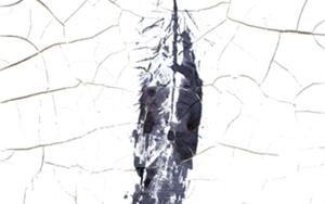 Huella de pluma II|Escultura de pareddeMacarena Garví| Compra arte en Flecha.es