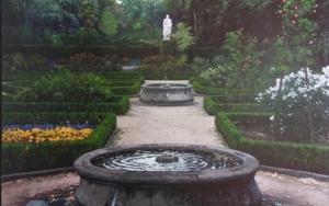 Jardin Botánico de Madrid|PinturadeTomás Guzmán| Compra arte en Flecha.es