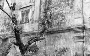 Vat Phou|FotografíadeVerónica Velasco Barthel| Compra arte en Flecha.es