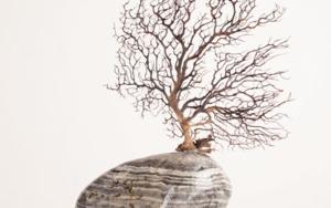 Contemplar viene de templo|EsculturadeJuan Manuel Leiva| Compra arte en Flecha.es