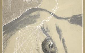 Anatomía de la vigilia|CollagedeSara Calivi| Compra arte en Flecha.es