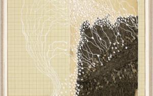 Anatomía de una alucinación|CollagedeSara González| Compra arte en Flecha.es