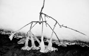 Nieve, agua y hielo|FotografíadeVerónica Velasco Barthel| Compra arte en Flecha.es