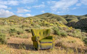 Primavera en el desierto|FotografíadeLeticia Felgueroso| Compra arte en Flecha.es