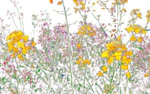 Bloom I|DigitaldeMarta Caldas| Compra arte en Flecha.es