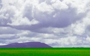 Colores en el campo|FotografíadeÁngela Fernández Häring| Compra arte en Flecha.es