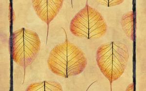 Leaf Lace  #03|DigitaldeAndy Sotiriou| Compra arte en Flecha.es