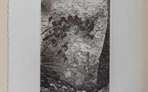 Boulder#8|FotografíadeCarles Mitjà| Compra arte en Flecha.es