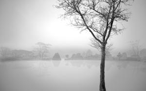 Water series  04 _Sussex, England|FotografíadeAndy Sotiriou| Compra arte en Flecha.es
