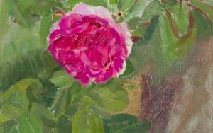 Rosas 4|PinturadeIgnacio Mateos| Compra arte en Flecha.es