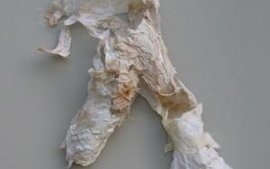 Fósil II|CollagedeBarbara Long| Compra arte en Flecha.es