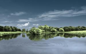 Water series  #19  :  Richmond Park, London.|FotografíadeAndy Sotiriou| Compra arte en Flecha.es
