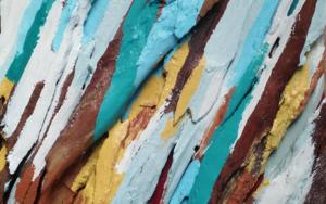 Eucalipto XVIII CollagedeCrisdever  Compra arte en Flecha.es