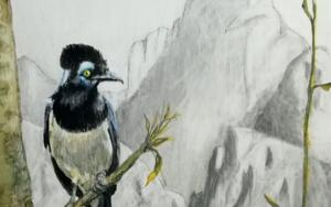 Ladrón de oro.|DibujodeRosario Rodriguez| Compra arte en Flecha.es