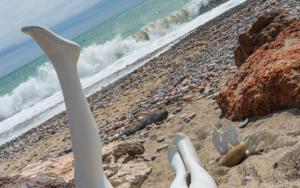 GeneraAcción_Plastic@ II|DigitaldeCruz Mondragón| Compra arte en Flecha.es