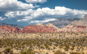 Desert|FotografíadeBenedetta Mascalchi| Compra arte en Flecha.es