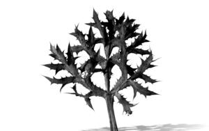 Objet Trouve|Digitaldejjuncadella| Compra arte en Flecha.es