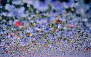 Visualización de la Metáfora en la Melodía del Color VI|DigitaldeKantfish| Compra arte en Flecha.es