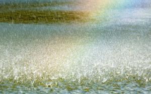 La fiesta del agua|FotografíadeXisco Fuster| Compra arte en Flecha.es