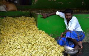 Flower seller in Madurai FotografíadeYabar  Compra arte en Flecha.es