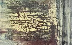 Corteza III PinturadeEnric Correa  Compra arte en Flecha.es