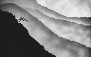 Mist series,  #01 DigitaldeAndy Sotiriou  Compra arte en Flecha.es