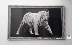 Abril Fotografíade-GII  Compra arte en Flecha.es